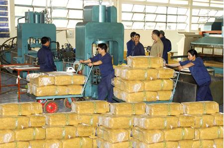 Xuất khẩu cao su đạt 1,6 tỷ USD